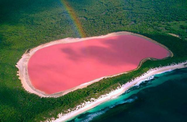 pink lake.2