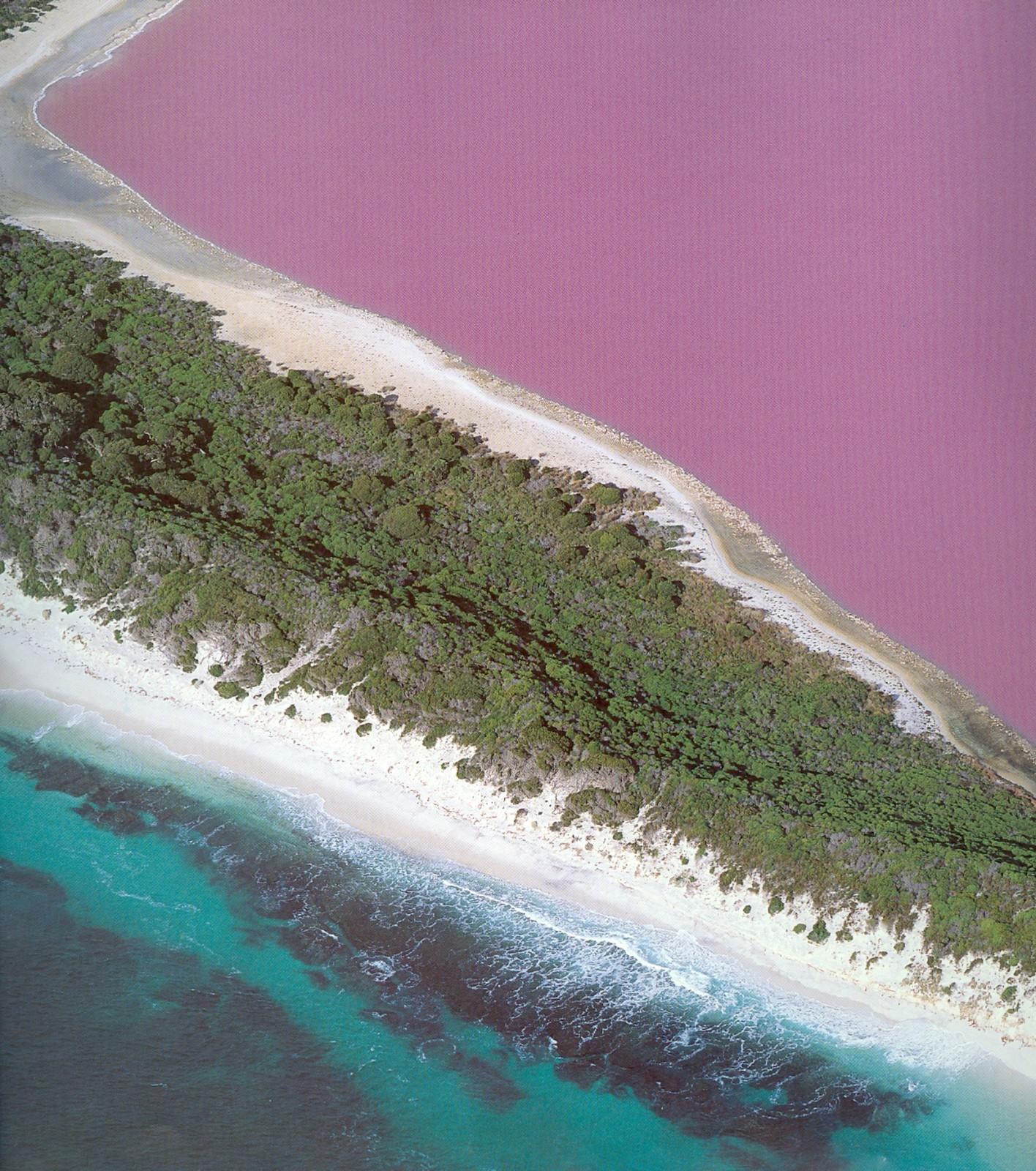 pink lake.5