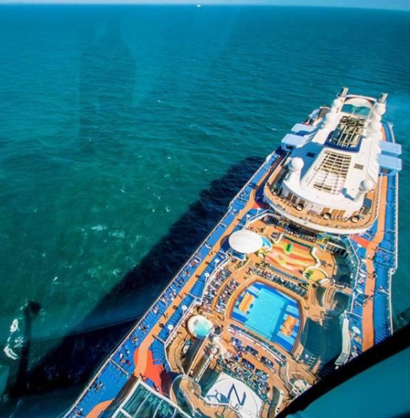 cruise.2