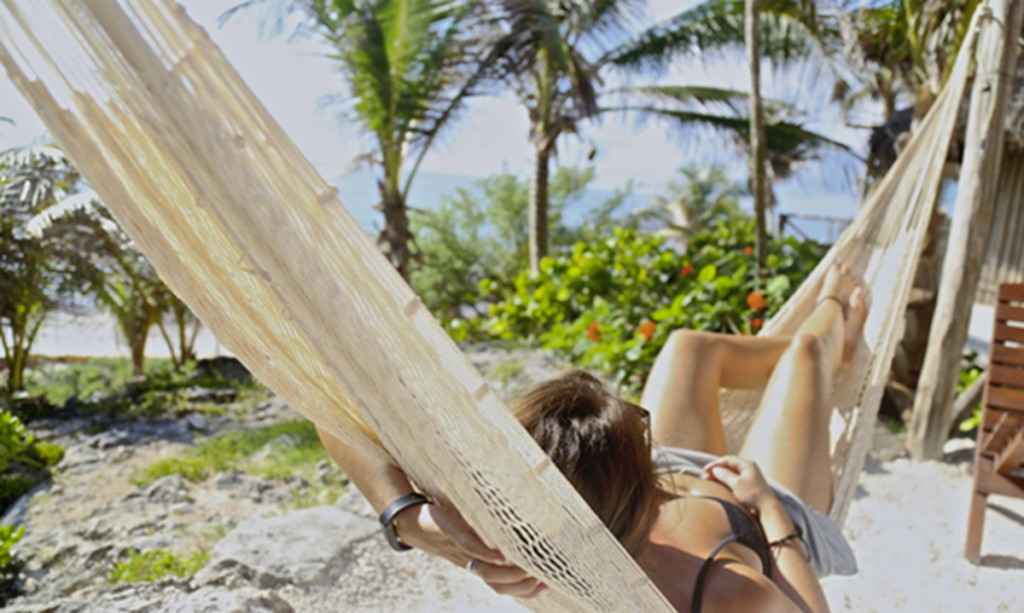 banner_few-miles-away_papaya-playa (1)