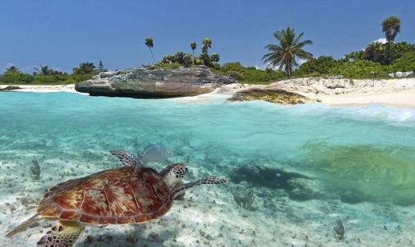 Visite d'hôtels à la Riviera Maya au Mexique – partie 1